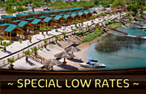 special low rates